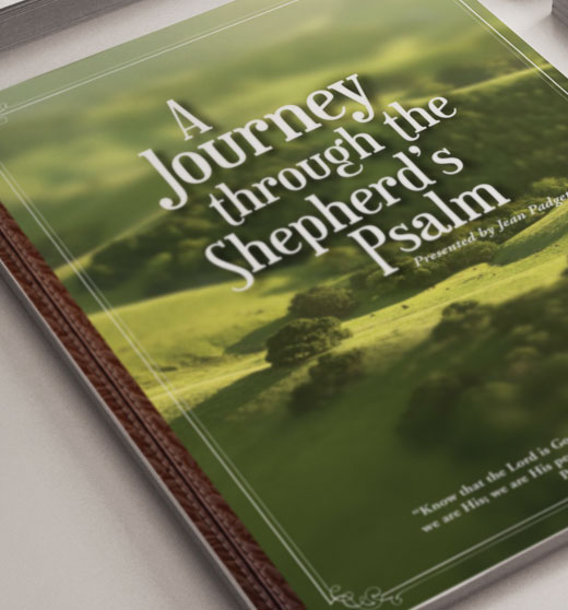 a journey through the shepards psalm work book cover design